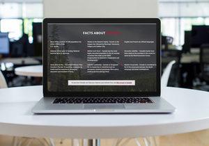 mockup of website for Navigatebusiness.ca